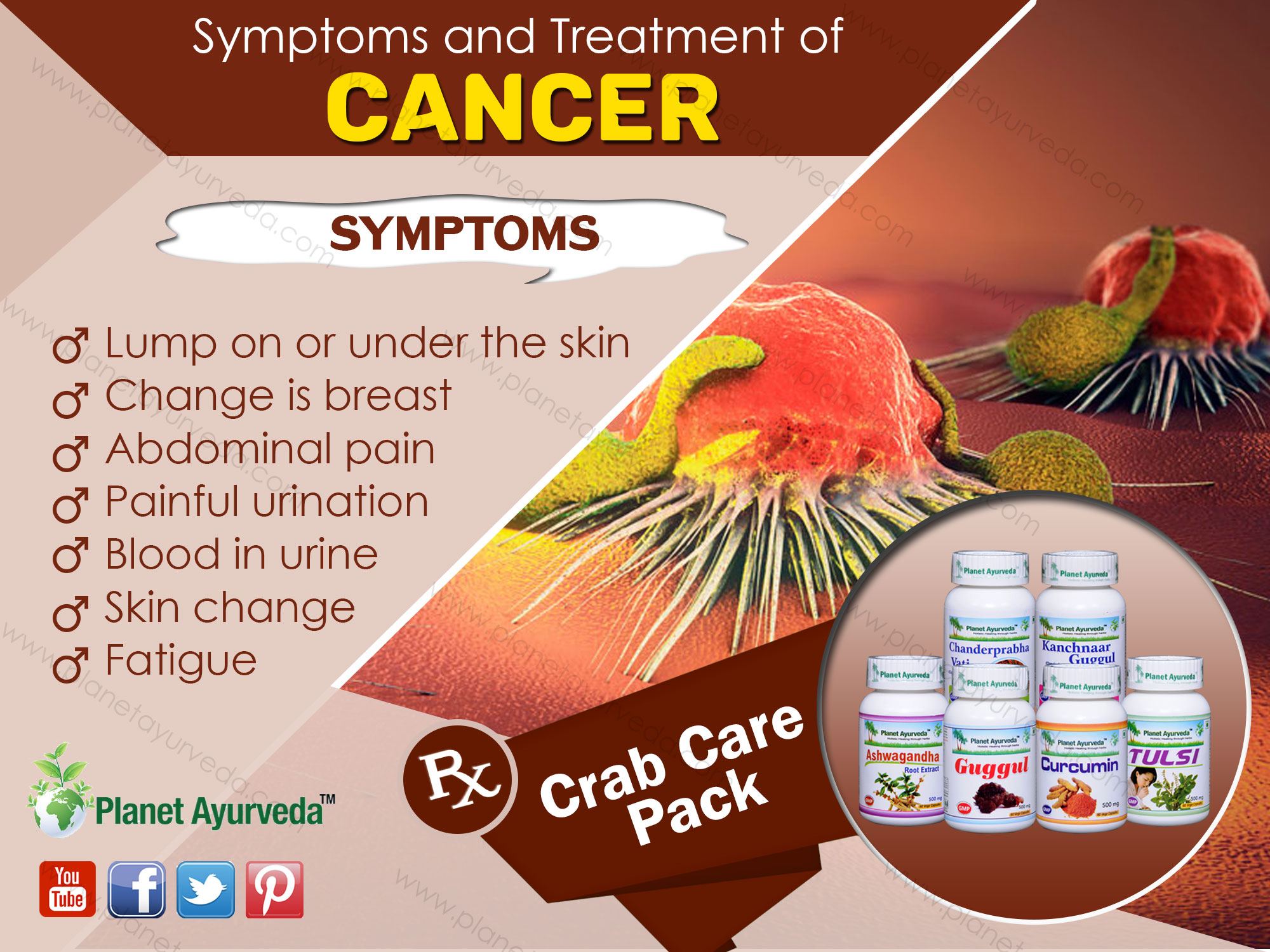 Ayurvedic-Treatment-of-Cancer
