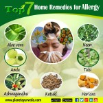 Top 7 Home Remedies for Allergy