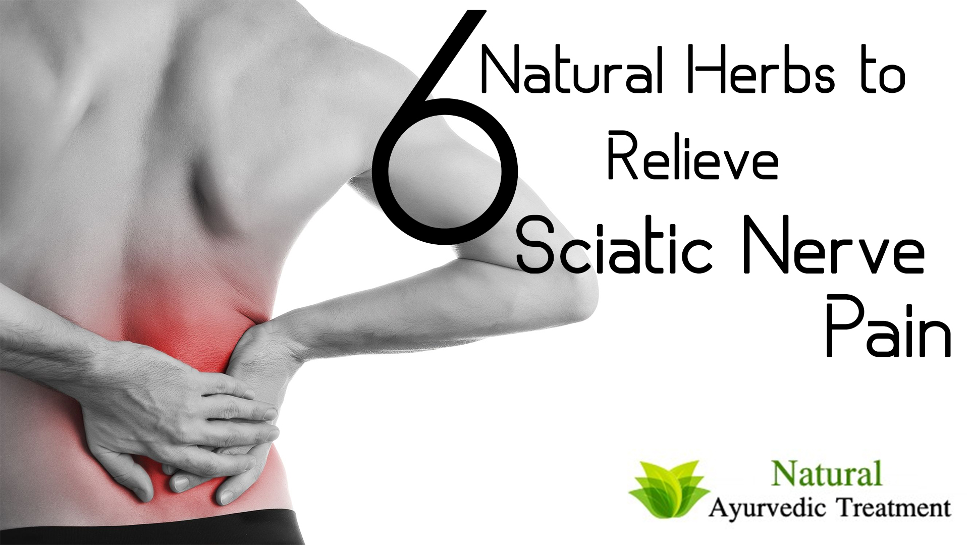 6 Natural Herbs to Relieve Sciatic Nerve Pain