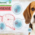 PREVENTION OF LIVER DISEASES IN DOGS