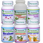 Herbal Remedies for Hepatic Encephalopathy